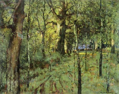 wendt-forest-interior-1898