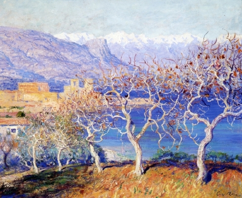 rose-fig-trees-antibes